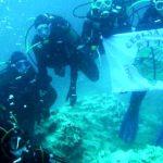Caccia al record: a Cesenatico si punta alla catena umana subacquea più lunga del mondo