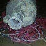 'Storie che Emergono dal Mare', una mostra che racconta l'evoluzione dell'archeologia subacquea in Sicilia