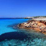 A Formentera la battaglia per salvare la Posidonia, il polmone del Mediterraneo