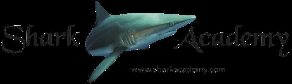 Alaska immersione con gli squali e Riccardo Sturla Avogadri