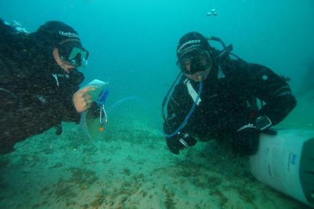 Haven, intensificati i controlli sul sito d'immersione