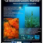 Stage di Biologia Marina e Subacquea ScientificaPalinuro (Salerno), 4-10 giugno 2018