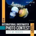 International Underwater Photo Contest mar Mediterraneo e città di Trieste