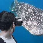 Vivi in anteprima i viaggi sub grazie ai Video VR 360° di DiveCircle